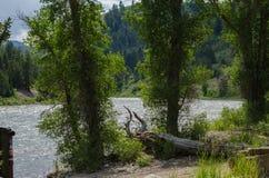 El río Snake Foto de archivo libre de regalías