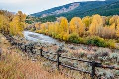 El río Snake y los álamos tembloses de oro Foto de archivo