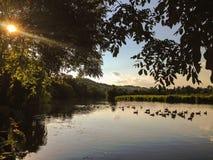 El río Támesis, Berkshire Fotografía de archivo libre de regalías