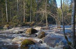 El río Tohmajoki Imágenes de archivo libres de regalías