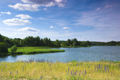 El río una visión hermosa Imágenes de archivo libres de regalías