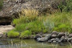 El río y las rocas en Giants se escudan la reserva de naturaleza de Kwazulu Natal Fotos de archivo libres de regalías