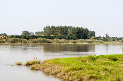 El río Yangzi y la hierba verde Fotografía de archivo