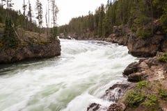 El río Yellowstone Foto de archivo