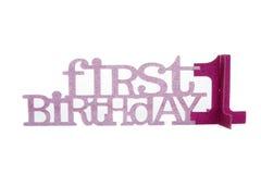 El 1r cumpleaños de la muchacha Fotografía de archivo libre de regalías