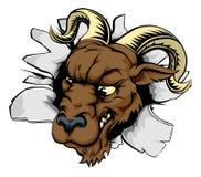 El Ram se divierte brecha de la mascota Imagen de archivo libre de regalías