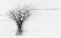 El ramo de lirios del valle florece el primer en la tabla de madera blanca con el espacio de la copia Imagen de archivo