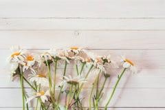 El ramo de margaritas en un fondo del blanco pintó el tablón de madera Imagen de archivo