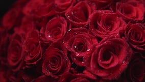 El ramo de rosas rojas para los vilentines día, cierre para arriba, gira la cámara alrededor de las flores almacen de video