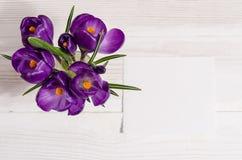 El ramo del azafrán florece en florero con la tarjeta vacía Imagenes de archivo