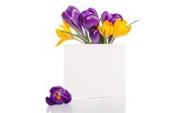 El ramo del azafrán florece en florero con la tarjeta vacía para el texto Imagen de archivo libre de regalías