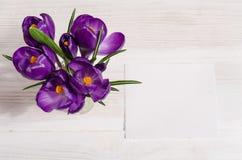 El ramo del azafrán florece en florero en la tabla de madera blanca Foto de archivo libre de regalías