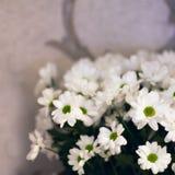 El ramo del ` s de la novia, las rosas blancas, los tulipanes, las flores delicadas, el uso como fondo o la textura, colores en c Fotografía de archivo libre de regalías