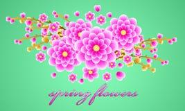 El ramo delicado de bosque de la primavera florece para su diseño Fondo floral Vector Fotos de archivo libres de regalías