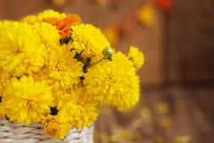 El ramo hermoso del primer de crisantemos amarillos florece en los wi imagen de archivo