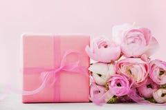 El ranúnculo hermoso de la primavera florece y regalo en fondo gris Color en colores pastel Tarjeta de felicitación para las tarj imágenes de archivo libres de regalías