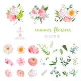 El ranúnculo, subió, peonía, dalia, camelia, clavel, orquídea, las flores de la hortensia y colección grande del vector de las pl stock de ilustración