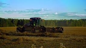 El rastrillo del tractor conduce en el campo que forma las franjas cerca de bosque metrajes