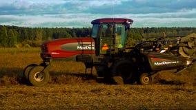 El rastrillo moderno del tractor de la paja actúa en campo cosechado almacen de metraje de vídeo