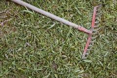 El rastrillo viejo abandonó la mentira en hierba verde en verano Efecto w de la película Imágenes de archivo libres de regalías