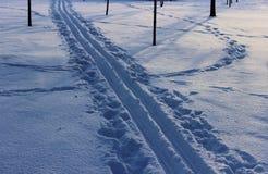 El rastro de los esquís Imagen de archivo