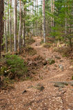 El rastro en las montañas fotos de archivo