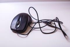 El ratón Fotos de archivo