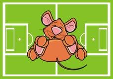 el ratón miente en el campo de fútbol Foto de archivo