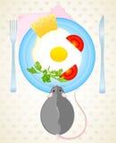 El ratón quiere comer los huevos fritos Imagen de archivo libre de regalías