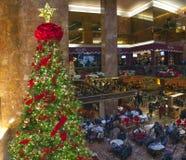 El árbol de navidad y el café en el triunfo se elevan en NYC Foto de archivo
