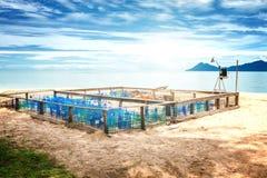 El recinto de la protección y de la vigilancia para la tortuga de mar eggs en un b Foto de archivo