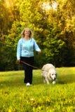 El recorrer con el perro Fotografía de archivo libre de regalías