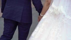 El recorrer de novia y del novio almacen de metraje de vídeo