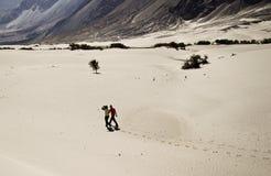 El recorrer en desierto fotos de archivo libres de regalías