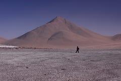 El recorrer en el Altiplano Bolivia Imagenes de archivo
