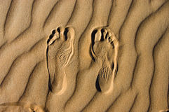 El recorrer en el desierto Imagen de archivo libre de regalías