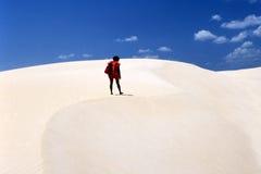 El recorrer en el desierto Imagen de archivo
