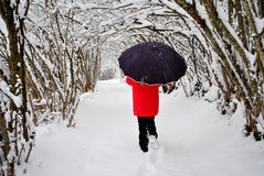 El recorrer en la nieve Imagen de archivo libre de regalías