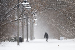El recorrer en la nieve Fotografía de archivo libre de regalías