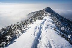El recorrer en montañas del invierno Imagen de archivo