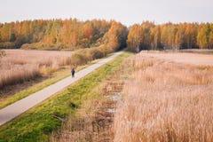El recorrer en otoño Imagen de archivo