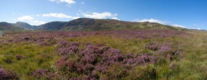 El recorrer en Snowdonia Fotos de archivo libres de regalías