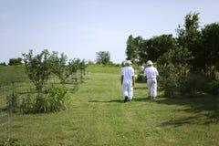 El recorrer a la colmena de la abeja Fotografía de archivo libre de regalías