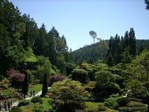 El recorrer a los jardines Imagenes de archivo
