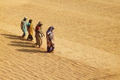 El recorrer a través de arroz de oro Foto de archivo libre de regalías