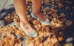 El recorrer a través de las hojas de otoño Imágenes de archivo libres de regalías