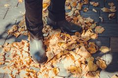 El recorrer a través de las hojas de otoño Fotografía de archivo libre de regalías