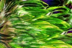 El rectángulo púrpura abstracto forma el fondo Imagenes de archivo
