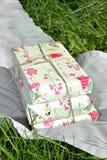 El regalo de cumpleaños rosado en la hierba Foto de archivo