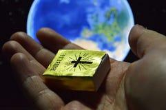 El regalo para la humanidad - palabras santas Imagen de archivo libre de regalías